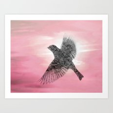 Pink And Lace Art Print