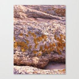 Winter Island Canvas Print