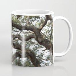 Live Oak Tree Coffee Mug