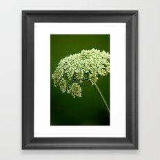 Wild Flower 1 Framed Art Print
