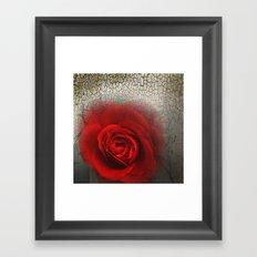 Desertrose Framed Art Print