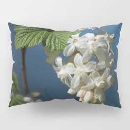 Understated Luminary      White Flowering Currant Bloom Pillow Sham