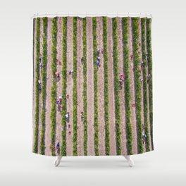 Grape Vine Shower Curtain