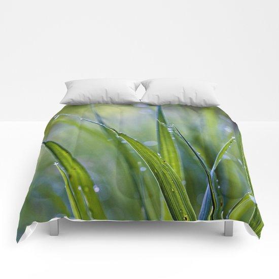 cool rain Comforters