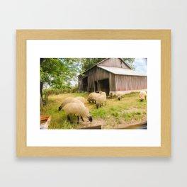 Little Sheep Framed Art Print