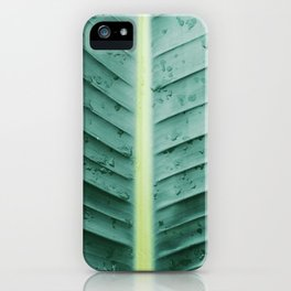 After the Rain In Paradise iPhone Case