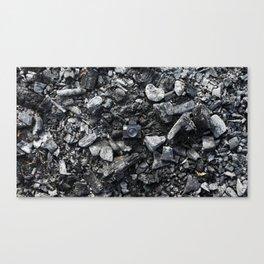 Charcoal & Tiny Tiny Camera Canvas Print