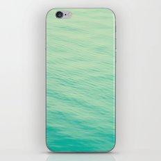 86 iPhone & iPod Skin