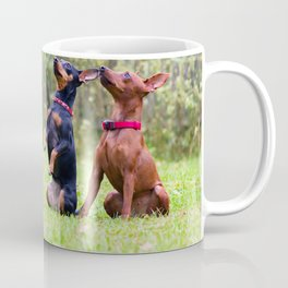 Outdoor portrait of two a miniature pinscher dogs sitting on the grass Coffee Mug