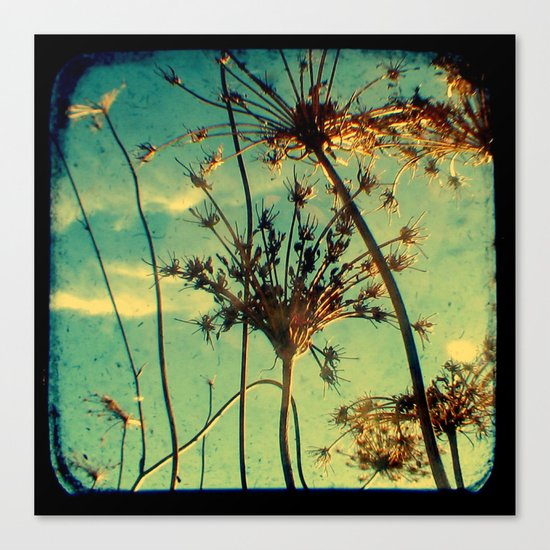 Head in the Clouds - Through The Viewfinder (TTV) Canvas Print