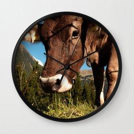 cute cow close Wall Clock