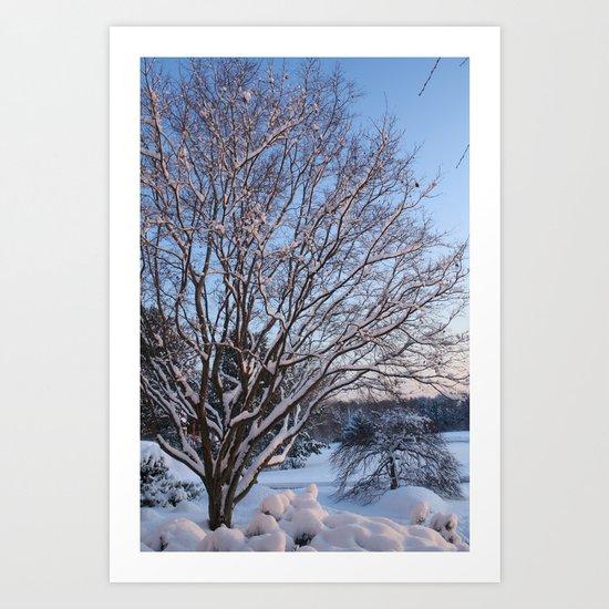 Snow Covered Art Print