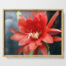 Jungle Cactus Red Serving Tray