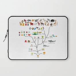 Evolution scale from unicellular organism to mammals. Evolution in biology, scheme evolution Laptop Sleeve