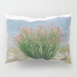 Ocotillo Plant (Anza Borrego Desert, California) Pillow Sham