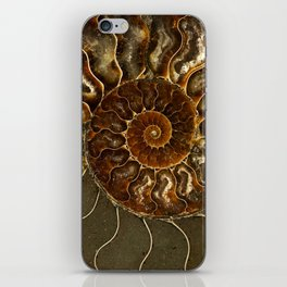 An ancient amonite iPhone Skin