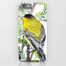 Lesser Goldfinch Bird Watercolor Art iPhone Case