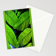 recto verso Stationery Cards
