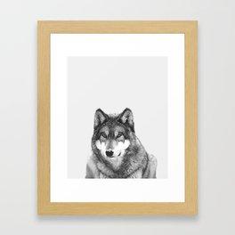 Black and White Wolf Framed Art Print