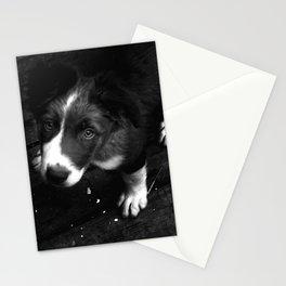 Lulu The Dog Stationery Cards