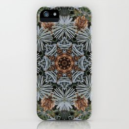 Spruce Cones And Needles Kaleidoscope K4 iPhone Case