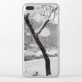SNOWY BROOKYN Clear iPhone Case