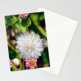 Fruitful Couple Stationery Cards