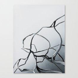 Organics 3 Canvas Print
