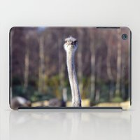 ostrich iPad Cases featuring Ostrich by JBuck