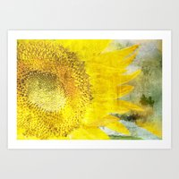 sunflower Art Prints featuring Sunflower by Maria Heyens