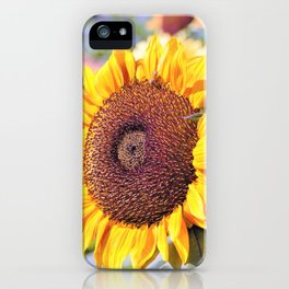 Sunflower Bee by Reay of Light iPhone Case