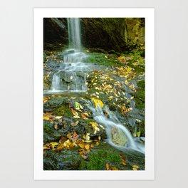 Autumn Color on Doyle's Falls Art Print