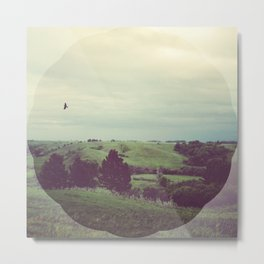Fly Little Bird Metal Print