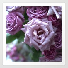 A Rose is a Rose is a Rose... Art Print