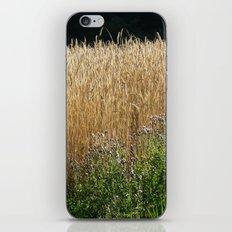 Field of summer iPhone & iPod Skin