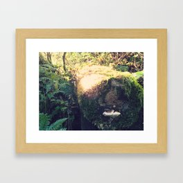 Colonized Log Framed Art Print