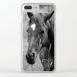 Horse Portrait - BW Clear iPhone Case