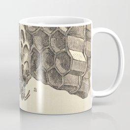 Antique Honeycomb Illustration Coffee Mug