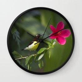 Purple Sunbrid Wall Clock