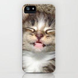 Kitten Smile iPhone Case