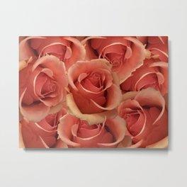Persian Red Roses Metal Print