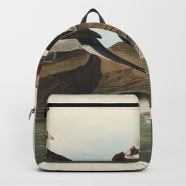 Long-tailed Duck from Birds of America (1827) by John James Audubon etched by William Home Lizars Backpack