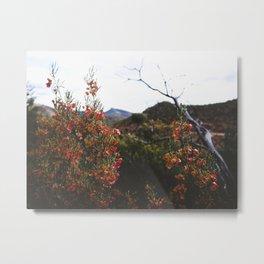 In Bloom II Metal Print
