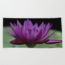 Purple Sacred Lotus Beach Towel