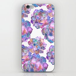 Rosette Succulents – Galaxy Palette iPhone Skin