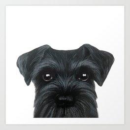 New Black Schnauzer, Dog illustration original painting print Art Print