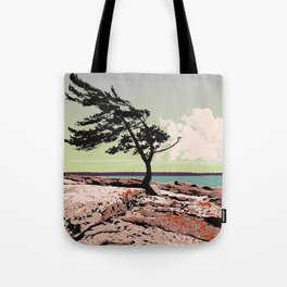 Killbear Provincial Park Tote Bag