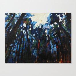 Woven Light Canvas Print