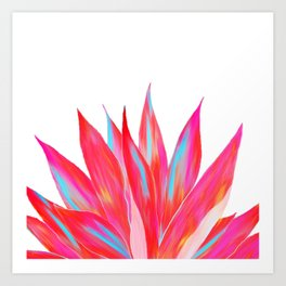 Sunny Agave Fringe Illustration Art Print