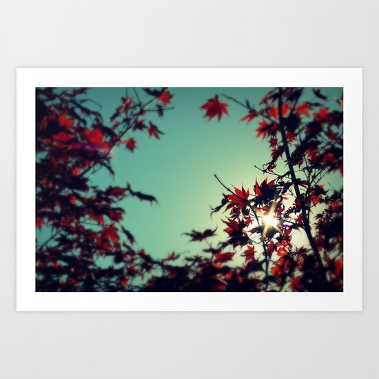 Autumn's Delight Art Print